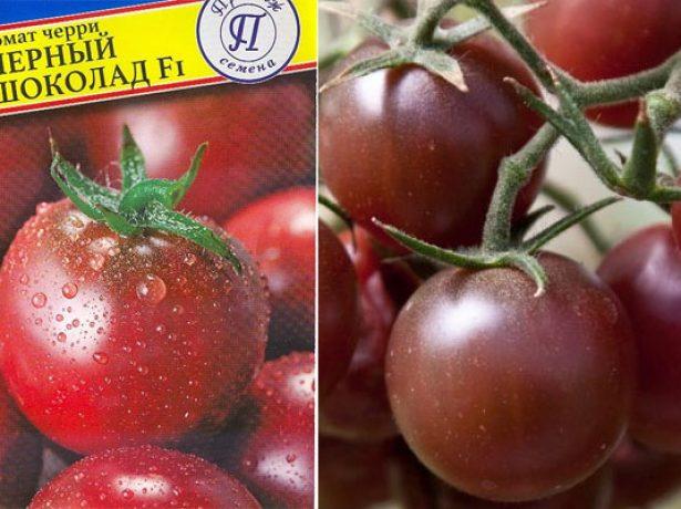 Плоды томата Чёрный шоколад