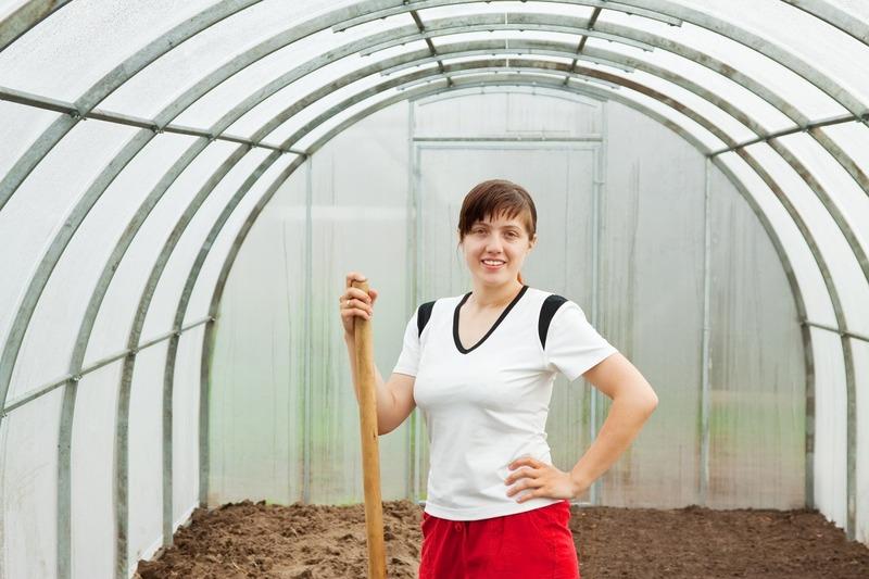 Надёжная основа урожая: весенняя обработка теплицы из поликарбоната