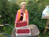 женщина с урожаем малины