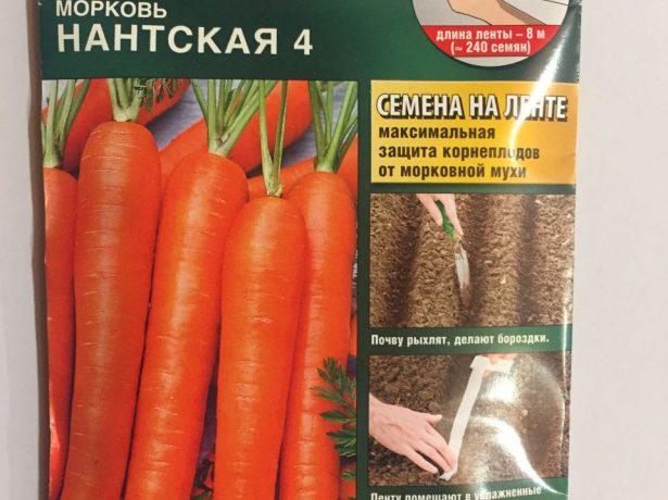 Сорт моркови Нантская 4