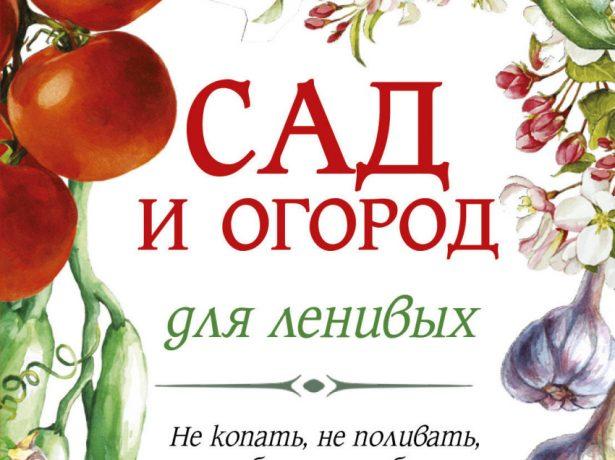 Книга Г. Кизимы