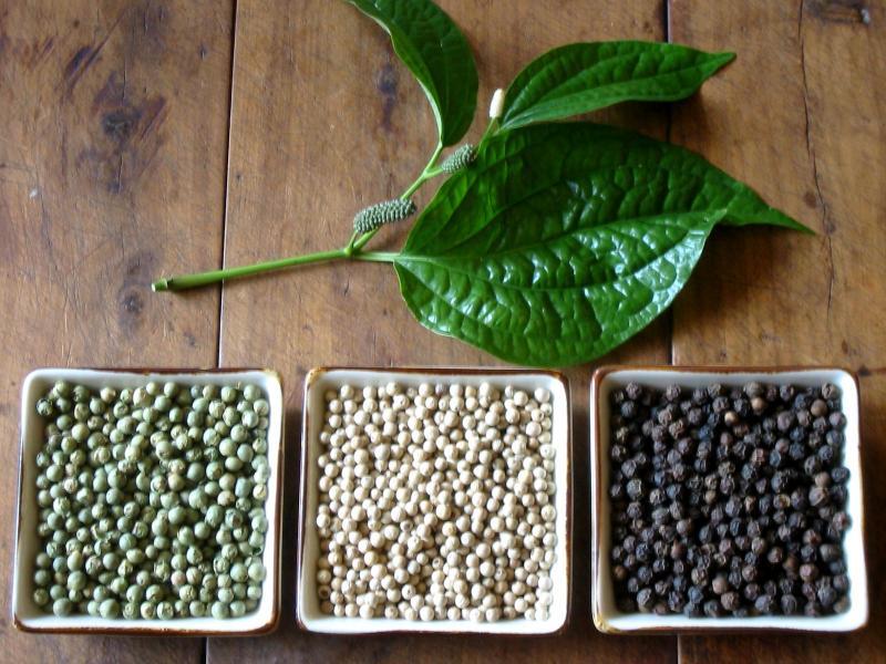 Чёрный перец в природе и дома: мифы и правда о выращивании специи