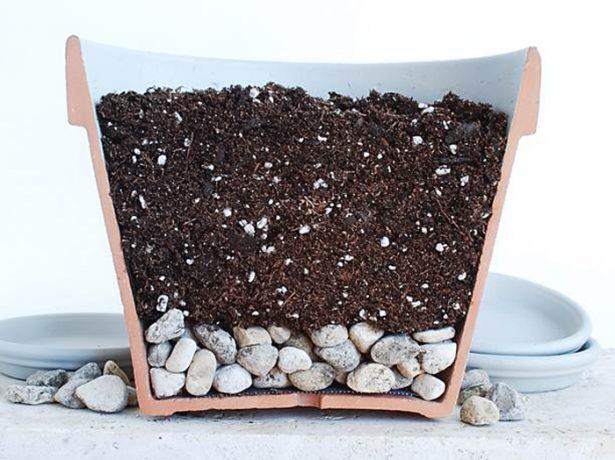 Ёмкость с почвой в разрезе