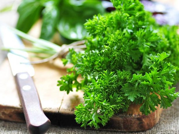 Зелень петрушки на столе