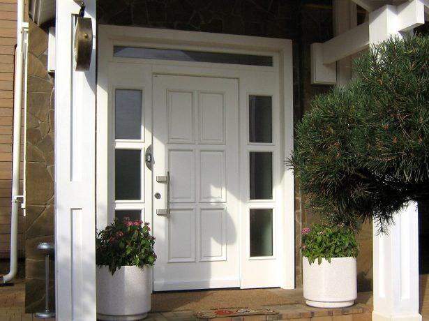 Входная металлопластиковая дверь для дома