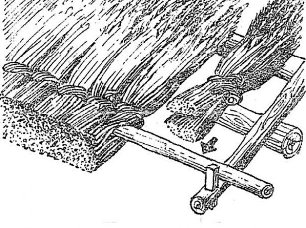 Укладка первого ряда камыша