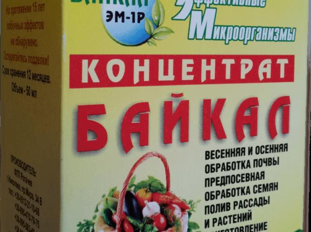 Байкал ЭМ