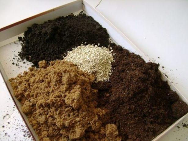 Элементы грунта для рассады