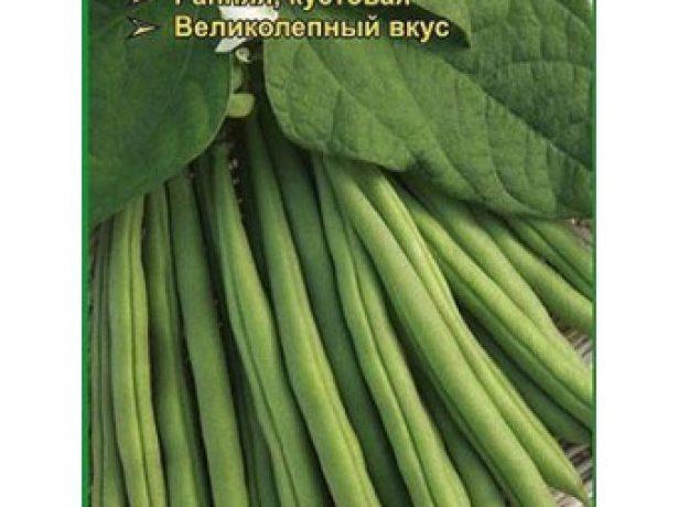 Семена фасоли Венера