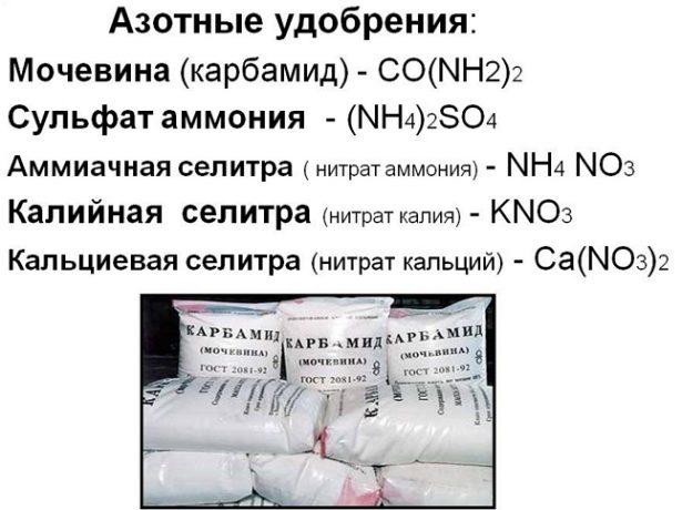 Азотно-фосфорные удобрения