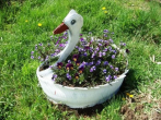 Клумба-лебедь