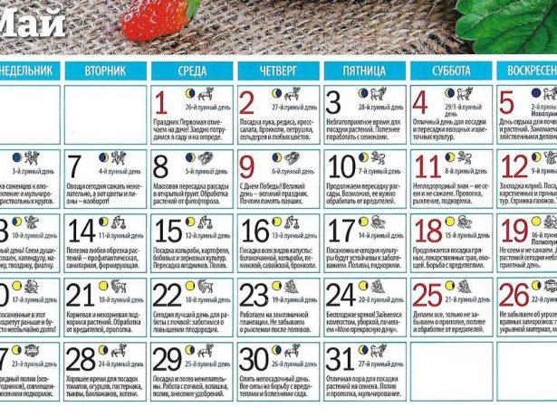 Лунный календарь садовода и огородника на май 2019 года
