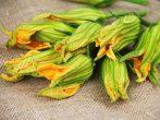 Цветы кабачка в эстетической кухне