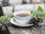 Листья смородины для здоровья и хорошего настроения