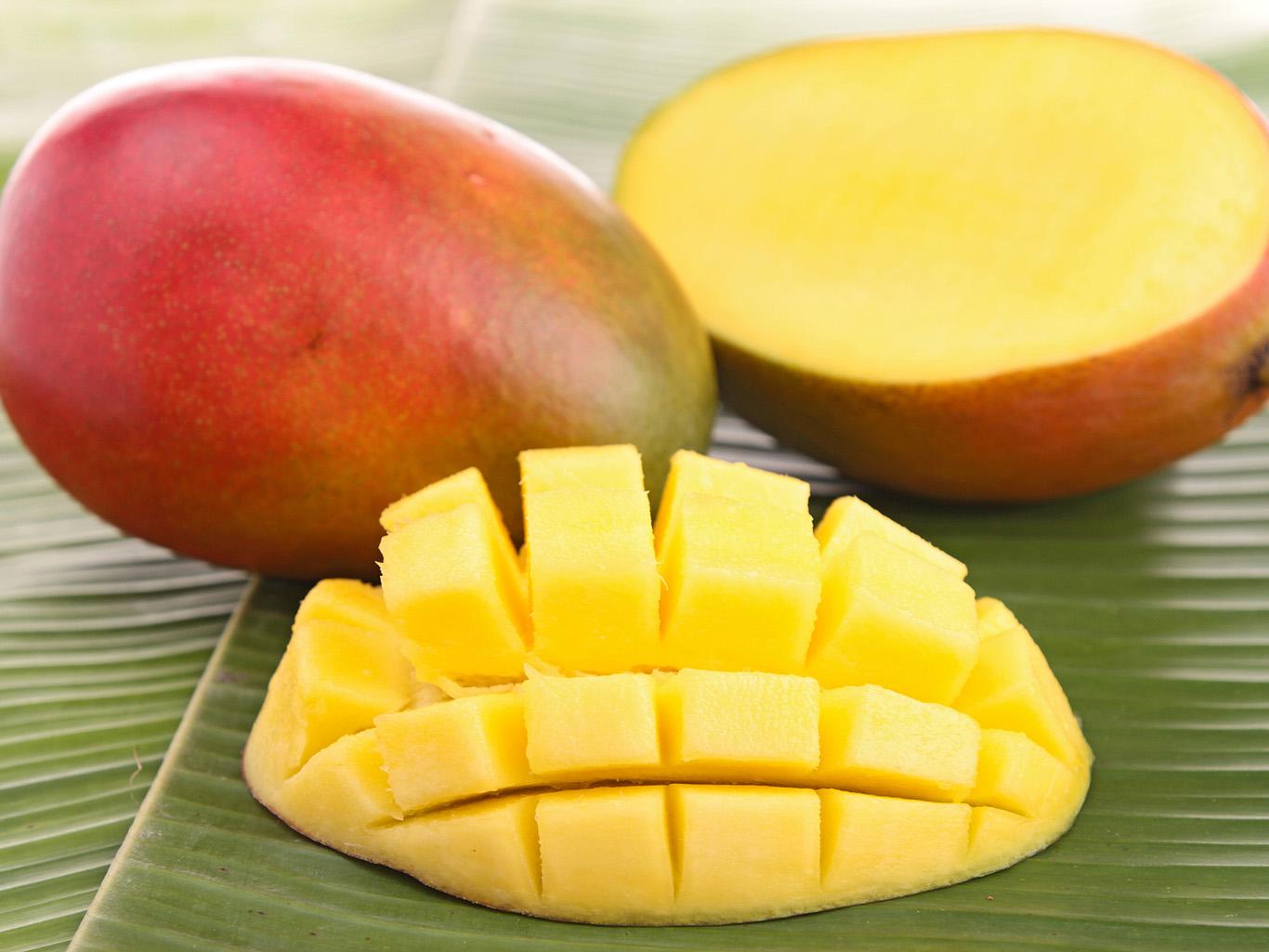 Сорта и разновидности манго