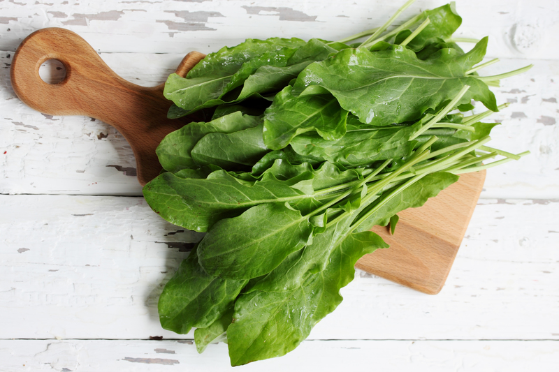Щавель или шпинат – что полезнее?