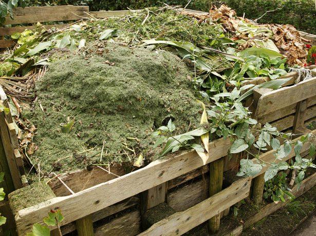 Получение органического удобрения