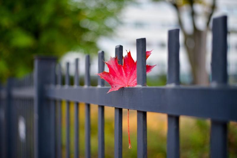 Осенью забора не городят: суеверие или дельный совет?