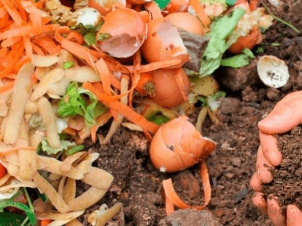 Сырье для компоста
