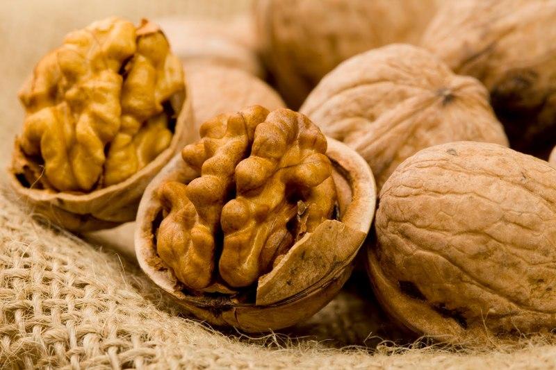 Храним грецкие орехи правильно: как уберечь ценный продукт от порчи
