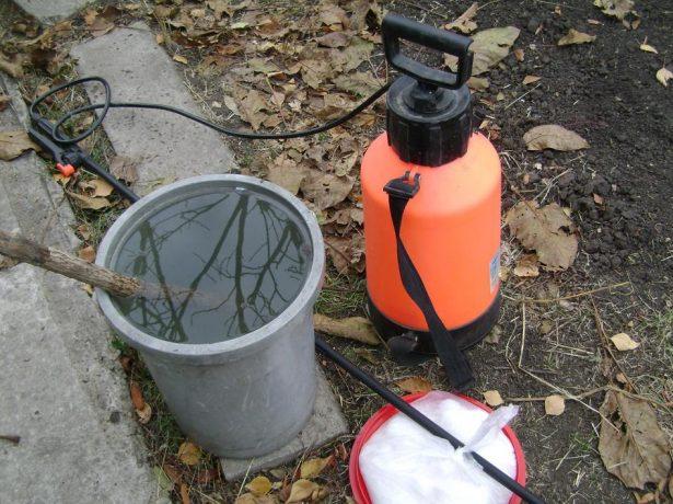 Раствор для опрыскивания растений