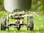 10 удобрений, которые могут нанести вред как растению, так и человеку