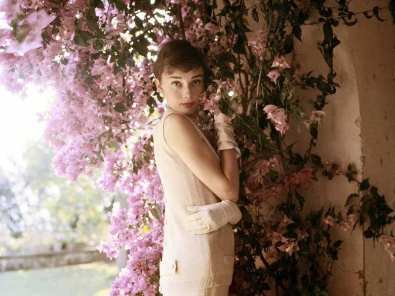 Какие самые любимые цветы знаменитых женщин