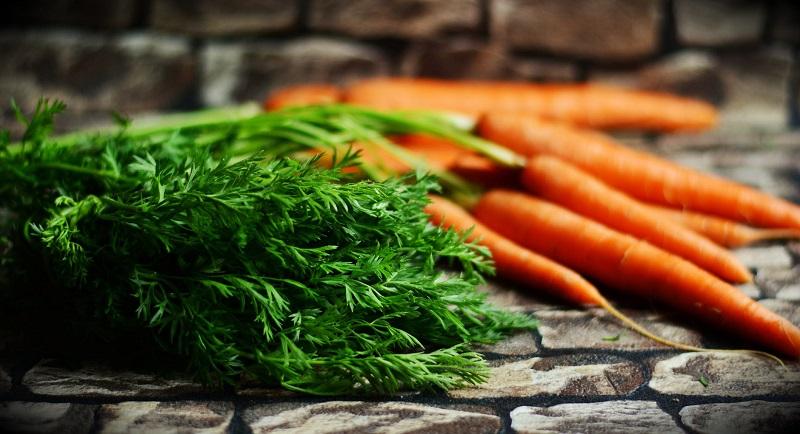 Укроп — Морковь