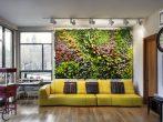 5 проблем, которые разом решит в вашей квартире вертикальное озеленение