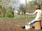 7 самых распространенных ошибок в дизайне сада, которые совершают практически все