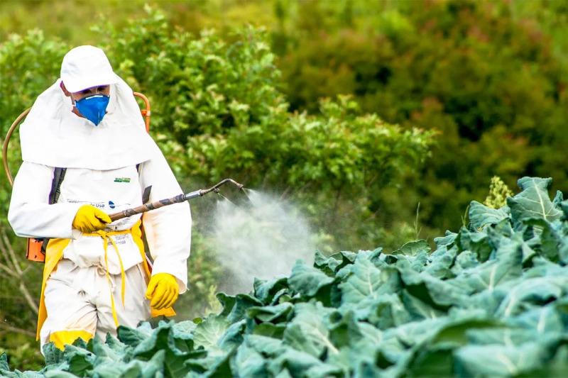 5 токсичных веществ, которые есть у вас на дачном участке