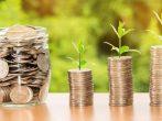 9 полезных привычек садовода, которые помогут существенно сэкономить
