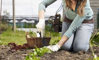 Можно ли работать на огороде в Страстную неделю