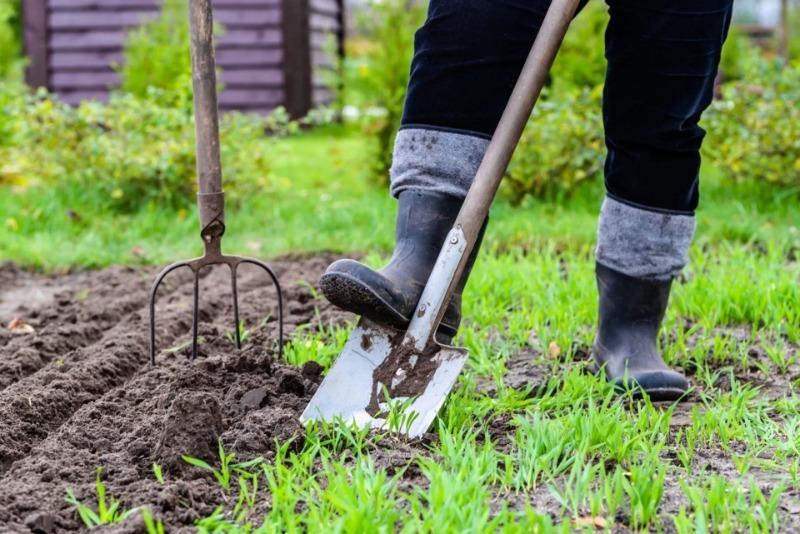 Можно ли заниматься огородом в Великий Пост – от Прощеного воскресенья и до Пасхи