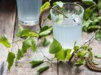 5 хмельных напитков, которые можно приготовить из березового сока