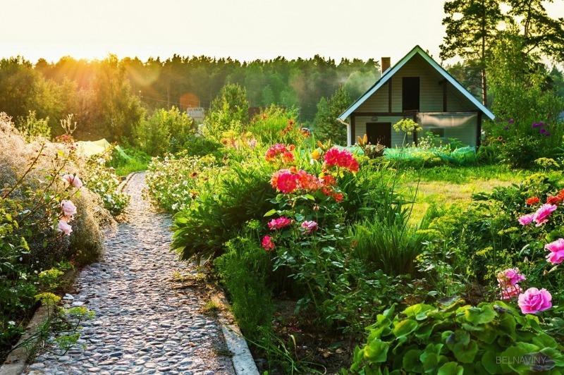 5 причин уменьшить огород