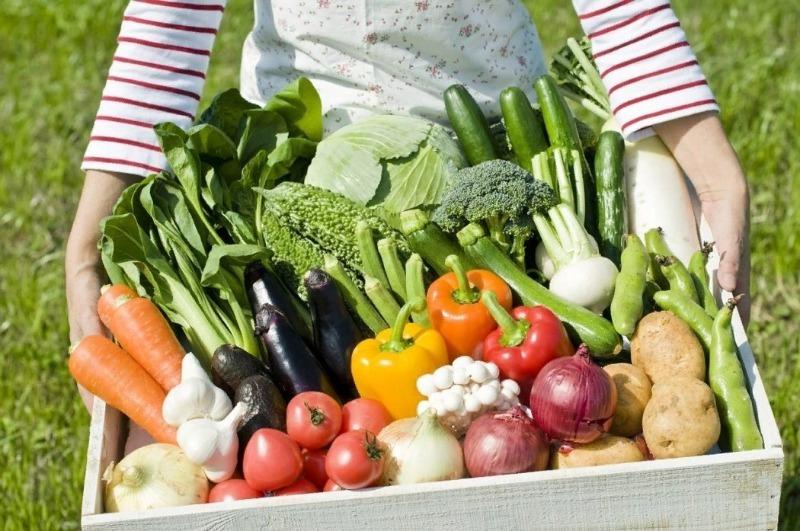 11 овощей, которые нужно сажать в кризис, чтобы не голодать