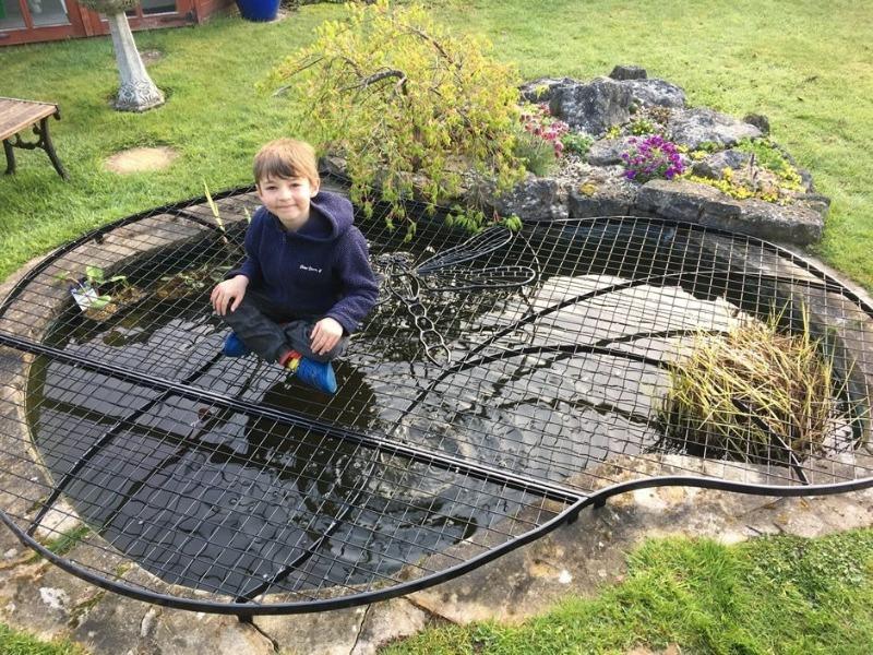 Как сделать пруд безопасным, если у вас гостят внуки на даче