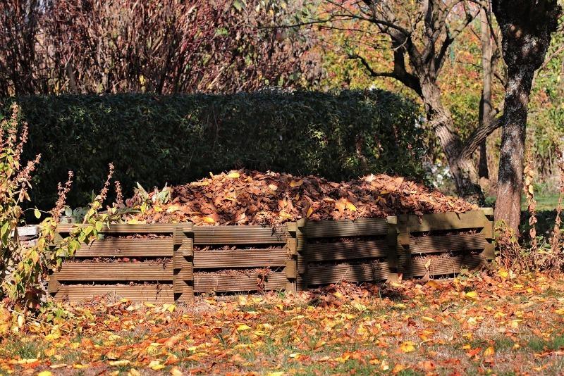 Зачем нужен компост: 7 полезных применений для семян, грядок и деревьев