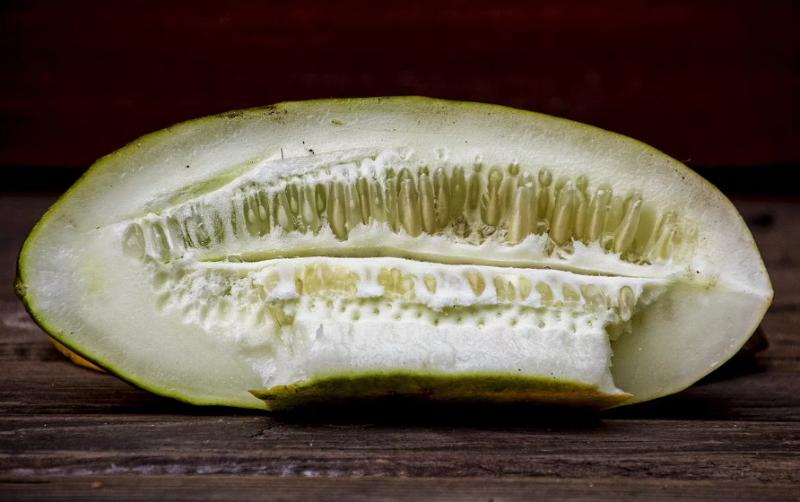 Из какого огурца семена дадут хороший урожай — как выбрать плод