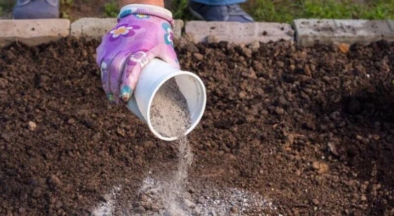 Чем раскислять почву в сентябре на картофельном поле для богатого урожая