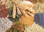 3 вещи, на которых огородники часто теряют деньги
