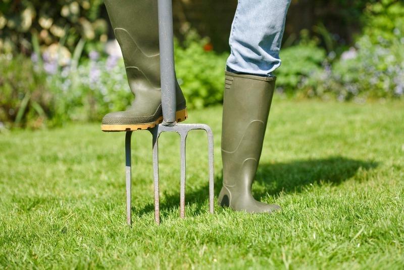 Как и чем провести осеннюю аэрацию газона для его успешной зимовки