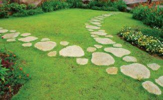 Как сделать дорожки для сада из ненужных вещей — 10 идей