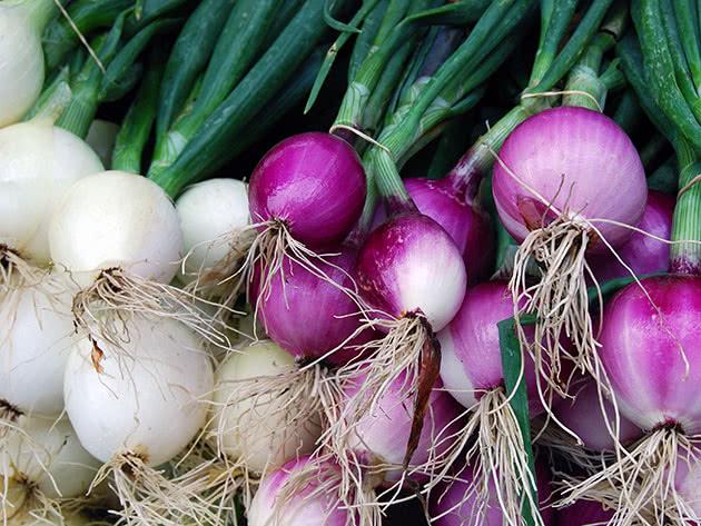 Когда убирать лук, посаженный под зиму — сроки сбора урожая