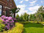 Спирея Голден Принцесс — фото и описание сорта, применение в ландшафтном дизайне